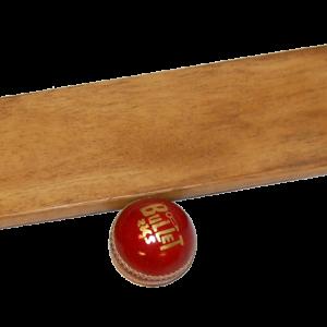 Cricket bat med bold